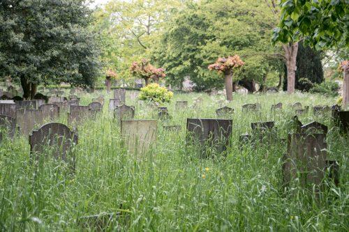 210526 Oude Begraafplaats 5383 k
