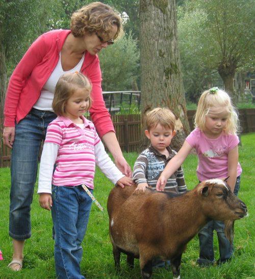Foto kinderboerderij Judith de Haan