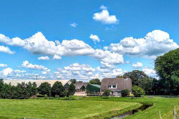 Frans Thuis in Gouda foto landscape